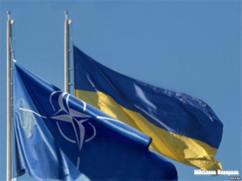 Профільний комітет Ради звертає увагу президента на виконання програми співпраці з НАТО