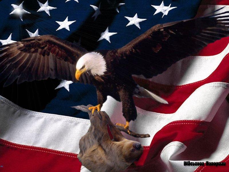П'ять ознак Американської імперії