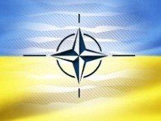 Україна відкрита для спостерігачів НАТО на парламентських виборах